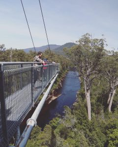 kathrynleahy-tahune-airwalk
