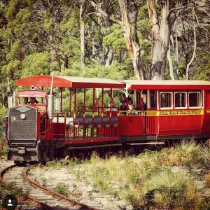 @geeveston_visitor_centre Ida Bay Railway