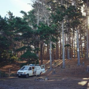 The Pines Campground, Cloudy Bay