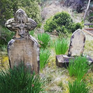 Old gravestones at Cockle Creek