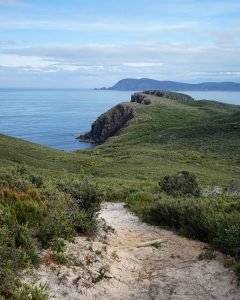 East Cloudy Head Track