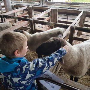 Huon Small Farms Expo