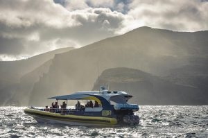 Explore Bruny Island's wild side onboard a Bruny Island Cruise