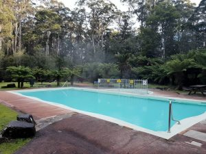 The Thermal Pool at Hastings Caves is fed by natural heated springwater