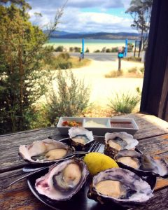 Get Shucked Oysters on Bruny Island