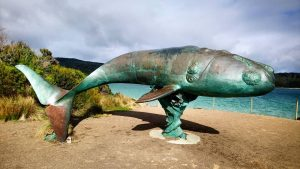 Cockle Creek whale sculpture